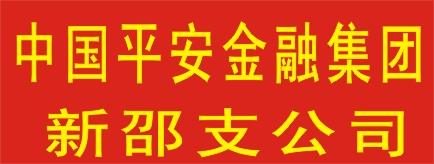 中国平安综合金融集团新邵支公司-岳阳招聘